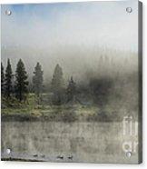 Morning Fog On The Yellowstone Acrylic Print by Sandra Bronstein