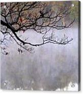 Morning Fog Over Lake Acrylic Print