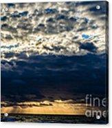 Morning Glory Acrylic Print