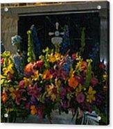 Morning Glory II Acrylic Print
