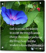 Morning Glory Serenity Prayer Acrylic Print