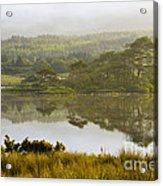 Morning Haze On Lough Bofin Acrylic Print