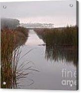 Morning In The Marsh Acrylic Print