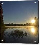Morning In The North Woods Acrylic Print