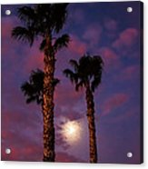 Morning Moon Acrylic Print by Robert Bales