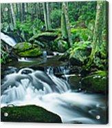 Morning On Hancock Brook Acrylic Print