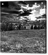 Morning On The Farm Two Bw Acrylic Print