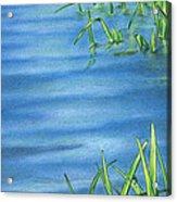 Morning On The Pond Acrylic Print