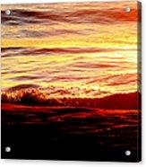 Morning Splash Acrylic Print