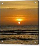 Morning Sun Acrylic Print