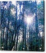 Morning Sun Rays Acrylic Print