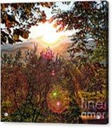 Morning Sunbeams Acrylic Print
