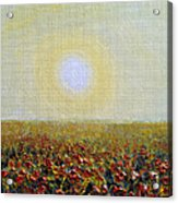 Morning Sunshine Three Acrylic Print