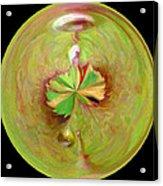 Morphed Art Globe 21 Acrylic Print