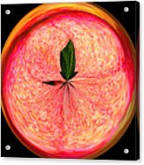 Morphed Art Globe 23 Acrylic Print by Rhonda Barrett