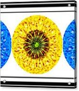 Mosaic Blue Circles With Yellow Acrylic Print