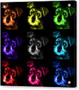 Mosaic Salt And Pepper Schnauzer Puppy Pop Art 7206 F -bb Acrylic Print