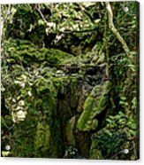 Moss And Stones By The Turquoise Forest Pond On A Summer Day No4 Acrylic Print