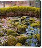 Moss Bridge Acrylic Print