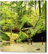 Moss Covered Rocks In Forest, Rocky Acrylic Print