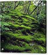 Moss Forest In Kyoto Japan Acrylic Print