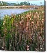 Moss Landing Washington North Carolina Acrylic Print by Joan Meyland