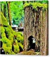Mosspost Acrylic Print