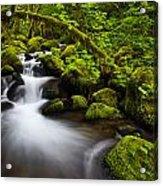 Mossy Arch Cascade Acrylic Print by Darren  White