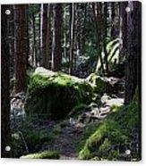 Mossy Boulders Acrylic Print