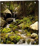 Mossy Falls 1 Acrylic Print