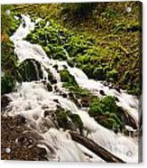 Mossy River Flowing. Acrylic Print