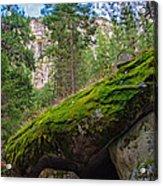 Mossy Rocks Along Vernal Falls Trail Acrylic Print