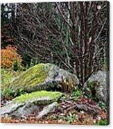 Mossy Rocks Garden Acrylic Print