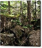 Mossy Rocks In The Forest Acrylic Print