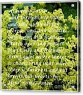 Most Powerful Prayer With Ladies Mantle Acrylic Print