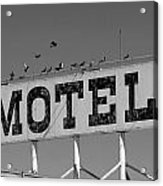 Motel For The Birds Acrylic Print by Peter Tellone