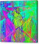 Mother Of Exiles 20130618m60 Acrylic Print