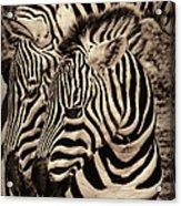 Mothers Embrace Acrylic Print