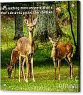 Mother's Protection Acrylic Print