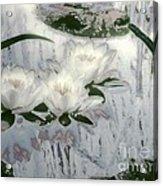 Motif Japonica No. 1 Acrylic Print
