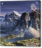 Mount Assiniboine In The Fall Acrylic Print
