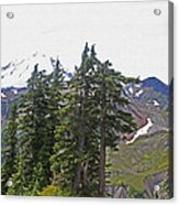 Mount Baker Area Wilderness Acrylic Print