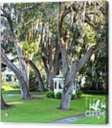 Mount Dora Acrylic Print by Carey Chen