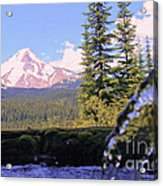 Mount Hood From Buzzard Point Acrylic Print by Cari Gesch