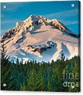 Mount Hood Winter Acrylic Print