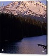 Mount Hood With Kids In Row Boat Silhouetted Acrylic Print