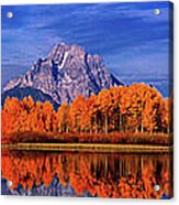 Mount Moran And Fall Color Grand Tetons Acrylic Print