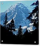 Mount Rainier 14 Acrylic Print