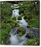 Mount Rainier Brook Acrylic Print