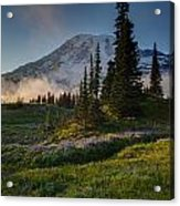 Mount Rainier Evening Fog Acrylic Print